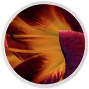 Round Beach Towel featuring the photograph Yellow And Purple by Jay Stockhaus
