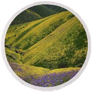 Yellow And Purple Wildlflowers Adourn The Temblor Range At Carrizo Plain National Monument Round Beach Towel