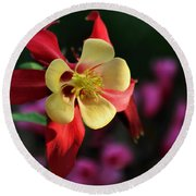 Yellow And Red Columbine Round Beach Towel by Kenny Glotfelty