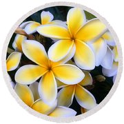 Yellow And White Plumeria Round Beach Towel