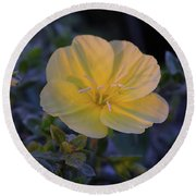 Round Beach Towel featuring the photograph Yellow Beach Evening Primrose by Marie Hicks