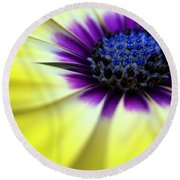 Yellow Beauty With A Hint Of Blue And Purple Round Beach Towel