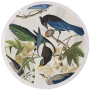 Yellow-billed Magpie Stellers Jay Ultramarine Jay Clark's Crow Round Beach Towel by John James Audubon
