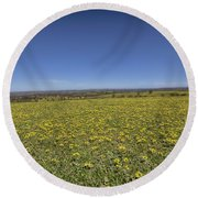 Round Beach Towel featuring the photograph Yellow Blanket II by Douglas Barnard