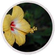 Yellow Bloom Round Beach Towel
