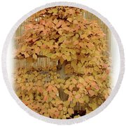Yellow Bonsai  Round Beach Towel