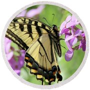 Yellow Butterfly Round Beach Towel by David Stasiak
