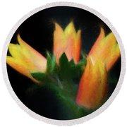 Yellow Cactus Flowers Round Beach Towel by Darleen Stry