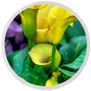 Yellow Calla Lilies Round Beach Towel