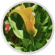 Yellow Calla Lilly Round Beach Towel by Luther Fine Art