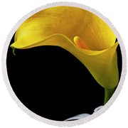 Yellow Calla Lily In Black And White Vase Round Beach Towel