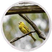 Yellow Canary Round Beach Towel
