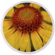 Yellow Cone Flower Round Beach Towel