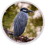 Round Beach Towel featuring the photograph Yellow-crowned Night-heron by Steven Sparks