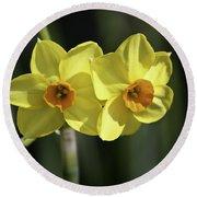 Yellow Daffodils 2 Round Beach Towel