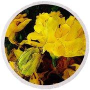 Yellow Daffodils 6 Round Beach Towel