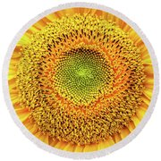 Yellow Eye Round Beach Towel