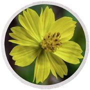 Round Beach Towel featuring the photograph Yellow Flower by Ed Clark