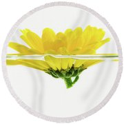 Yellow Flower Floating In Water Round Beach Towel