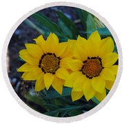 Gazania Rigens - Treasure Flower Round Beach Towel