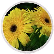 Round Beach Towel featuring the photograph Yellow Gerbera Daisies By Kaye Menner by Kaye Menner