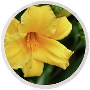 Yellow Hibiscus Flower Round Beach Towel by Tony Grider