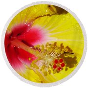 Yellow Hibiscus Macro Round Beach Towel