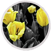 Yellow In Black And White Round Beach Towel by Steven Parker
