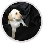 Yellow Lab Puppy Sadie Round Beach Towel