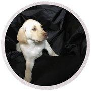 Yellow Lab Puppy Sadie Round Beach Towel