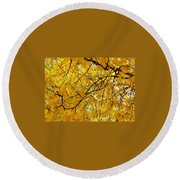 Round Beach Towel featuring the photograph Yellow Leaf by Jennifer Lake