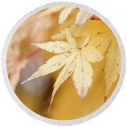 Yellow Leaf With Red Veins Round Beach Towel