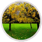 Yellow Leaves At Muckross Gardens Killarney Round Beach Towel