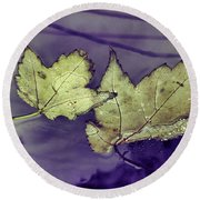 Yellow Leaves On  Windshield Round Beach Towel