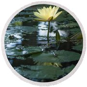Yellow Lilly Tranquility Round Beach Towel