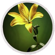 Yellow Lilly With Stem Round Beach Towel