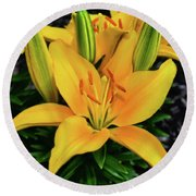 Round Beach Towel featuring the photograph Yellow Lily 008 by George Bostian