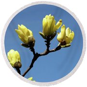 Yellow Magnolia Round Beach Towel