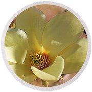 Yellow Magnolia In Full Bloom Round Beach Towel