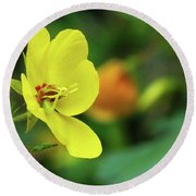 Yellow Moth Mullein In Tennessee Round Beach Towel