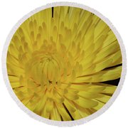 Yellow Mum Round Beach Towel