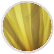 Yellow Mum Petals Round Beach Towel