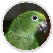 Yellow Naped Amazon Parrot Round Beach Towel