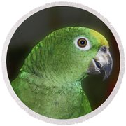Yellow Naped Amazon Parrot Round Beach Towel