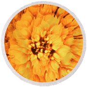 Yellow Flower Under The Microscope Round Beach Towel