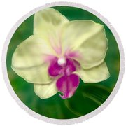 Yellow Phalenopsis Round Beach Towel