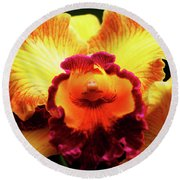 Round Beach Towel featuring the photograph Yellow-purple Orchid by Anthony Jones