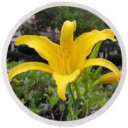 Yellow Renaissance Lily Round Beach Towel