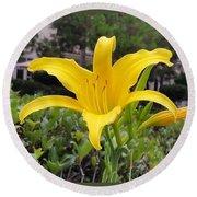 Yellow Renaissance Lily Round Beach Towel