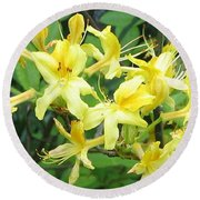 Yellow Rhododendron Round Beach Towel by Carla Parris
